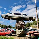Limo on High by AnnDixon