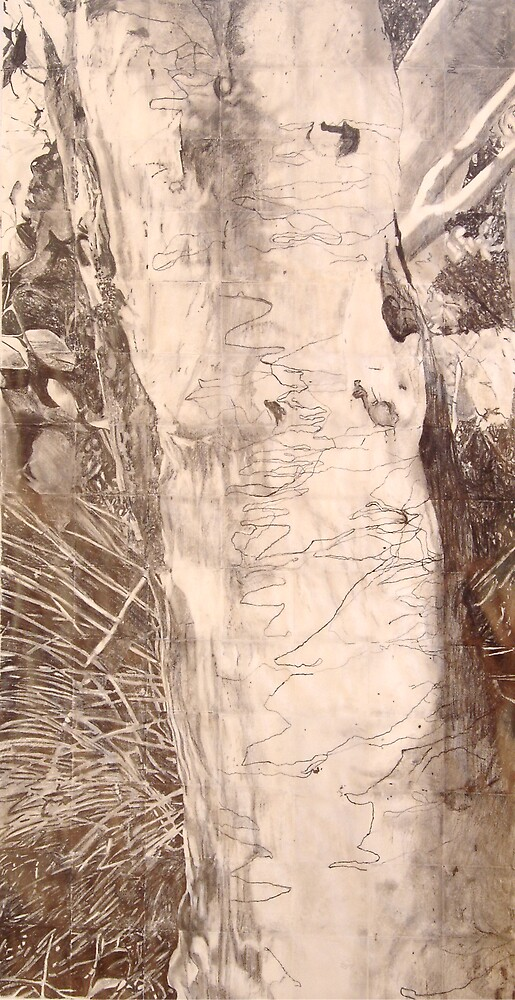 Scribbly Gum - Drawing by Marilyn Brown