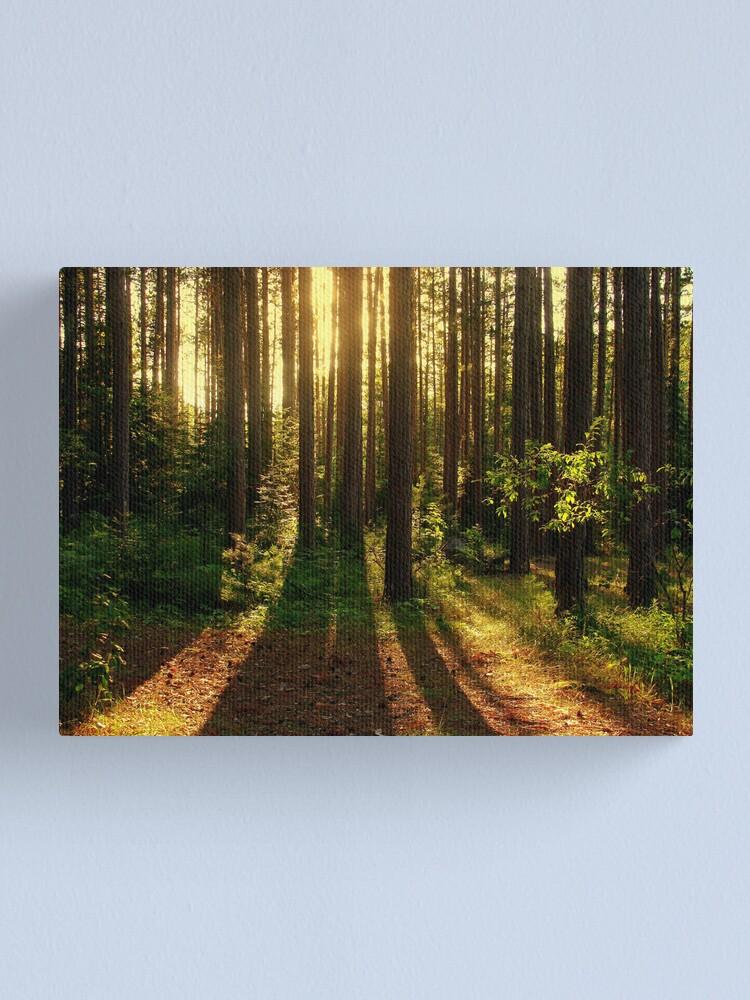 Alternate view of Spirit Renewed Canvas Print