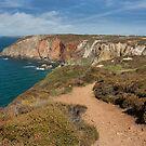 South west coast path ,  Perranporth Cornwall by eddiej
