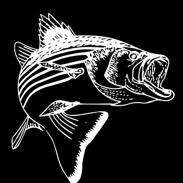 Striped Bass - White by OctopusOveralls