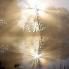 Sun Rays Reflected by Jo Nijenhuis