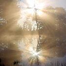 Sun Rays Reflected by Jo Nijenhuis