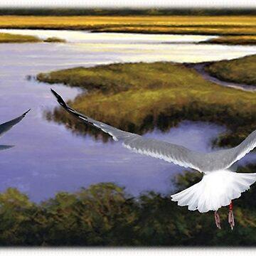 Two Seagulls over Marsh by thegrafaxspot