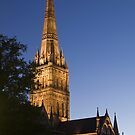 Salisbury Cathedral - evening light. by Tony Reed