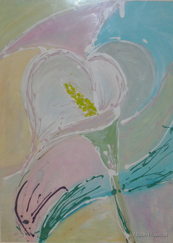 Calla Lily by Alison Howson