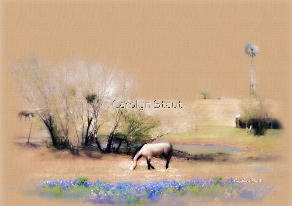 Taking It Slow and Easy by Carolyn Staut