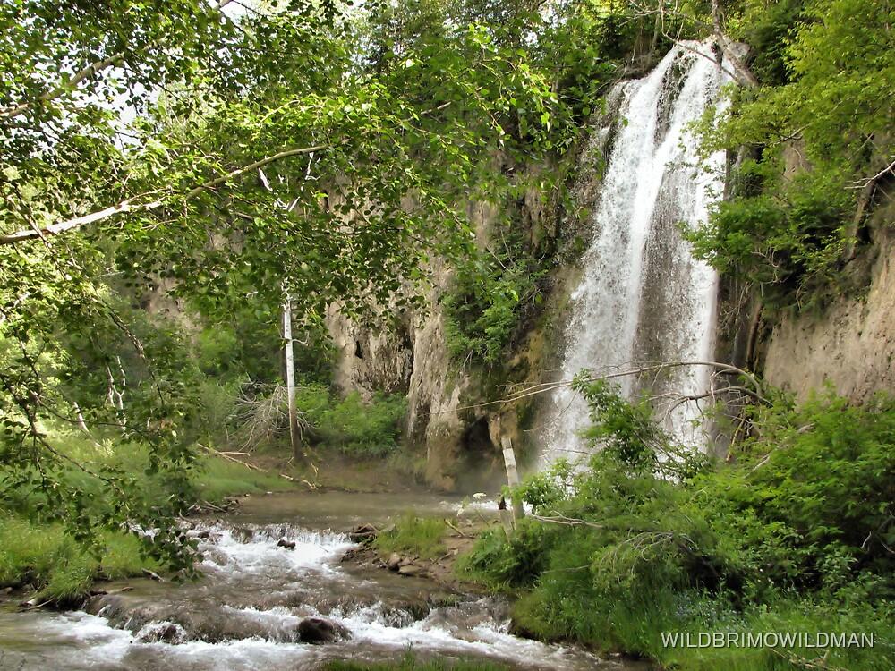 Spearfish Falls by WILDBRIMOWILDMAN