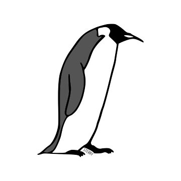 Emperor Penguin - Bird Illustration in Black and White by HannahSterry