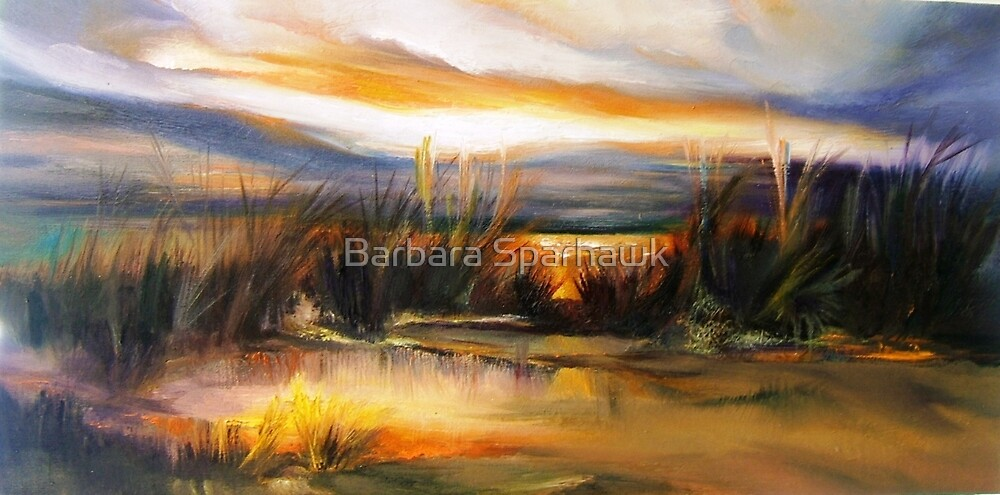 DUNES SUNSET, BIG SUR AFTER THE RAINS by Barbara Sparhawk