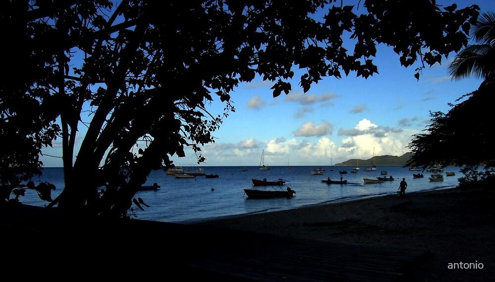 Fishing Bay by antonio