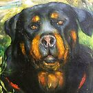 FORREST'S ANGEL, THE ROTTWEILER by Barbara Sparhawk