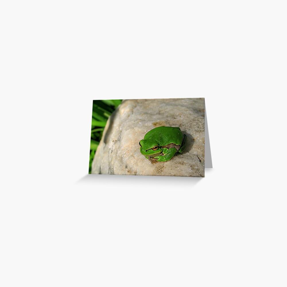 The European tree frog Greeting Card