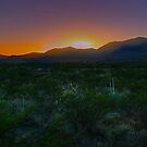 Guadalupe Mountains National Park Sunset by StonePics