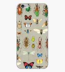 Die üblichen Verdächtigen - Insekten auf Grau - Aquarell Bugs Muster von Cecca Designs iPhone-Hülle & Cover
