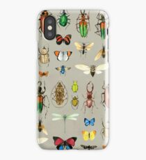 The Usual Suspects - Insects on grey - watercolour bugs pattern by Cecca Designs iPhone Case/Skin