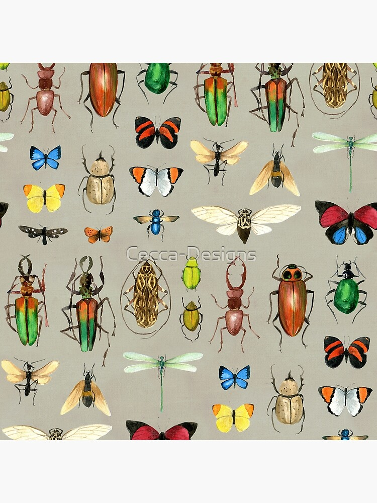 The Usual Suspects - Insects on grey - watercolour bugs pattern by Cecca Designs by Cecca-Designs
