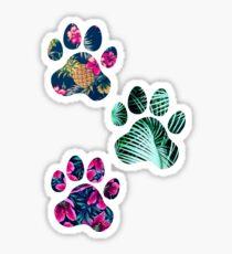 Tropisches Pfotenabdruck-Trio Sticker