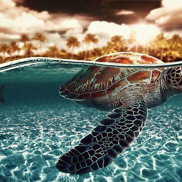 beautiful turtle by Ivanslin