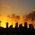 Skyscrapers, Sydney by Of Land & Ocean - Samantha Goode