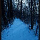 Walkin' down a winter path..In a world of blue by jammingene