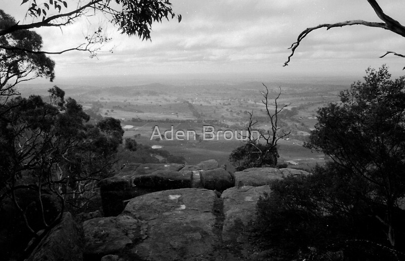 View From Mt Alexander by Aden Brown