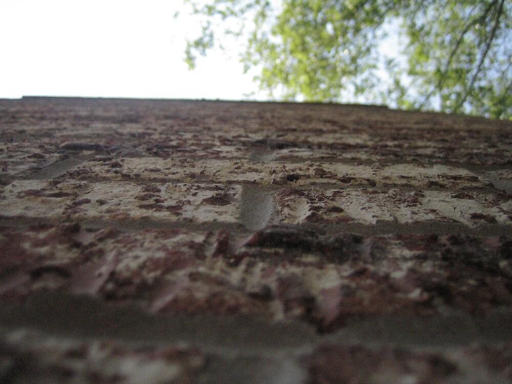 Brick Wall by AngryGoldfish