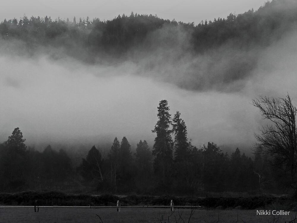 Misty Morning by Nikki Collier