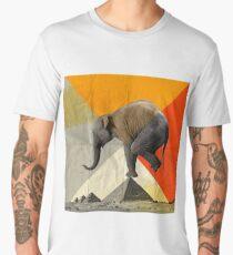 Balance of the Pyramids Men's Premium T-Shirt