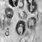 Floating 2 by Julie  Sutherland