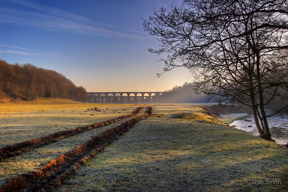 Icy Tracks by Rob Smith