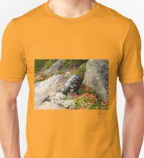 Rock garden memorial to children, Anchorage T-Shirt