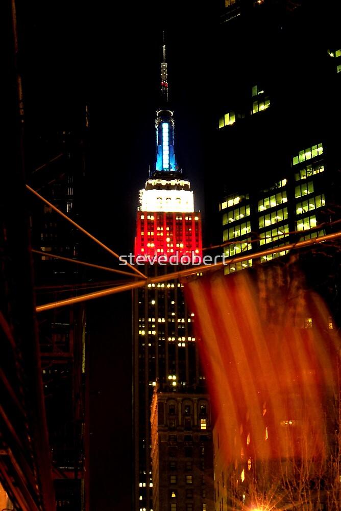 NY City by stevedobert