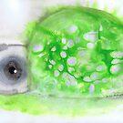 Turtle by Julie  Sutherland