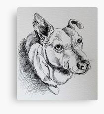 Dog Begging Canvas Print