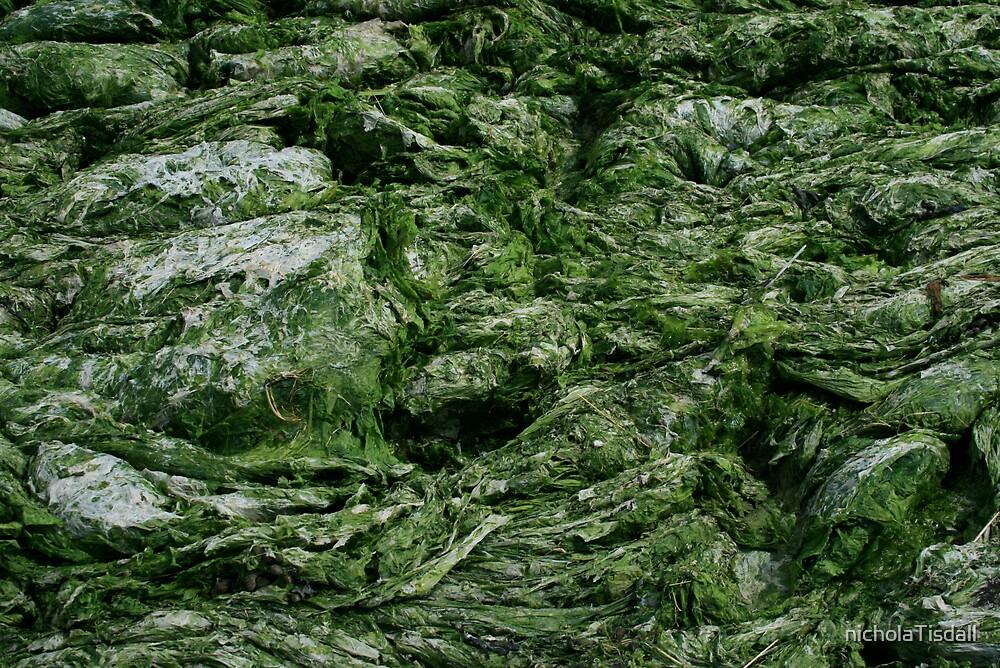 Seaweed by nicholaTisdall