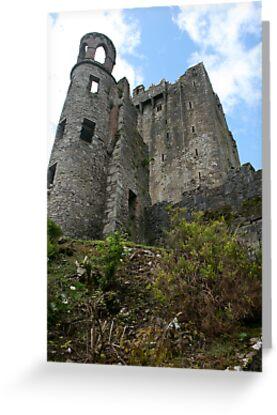 Blarney Castle by nicholaTisdall
