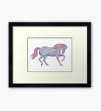 Rainbow Pony II Framed Print