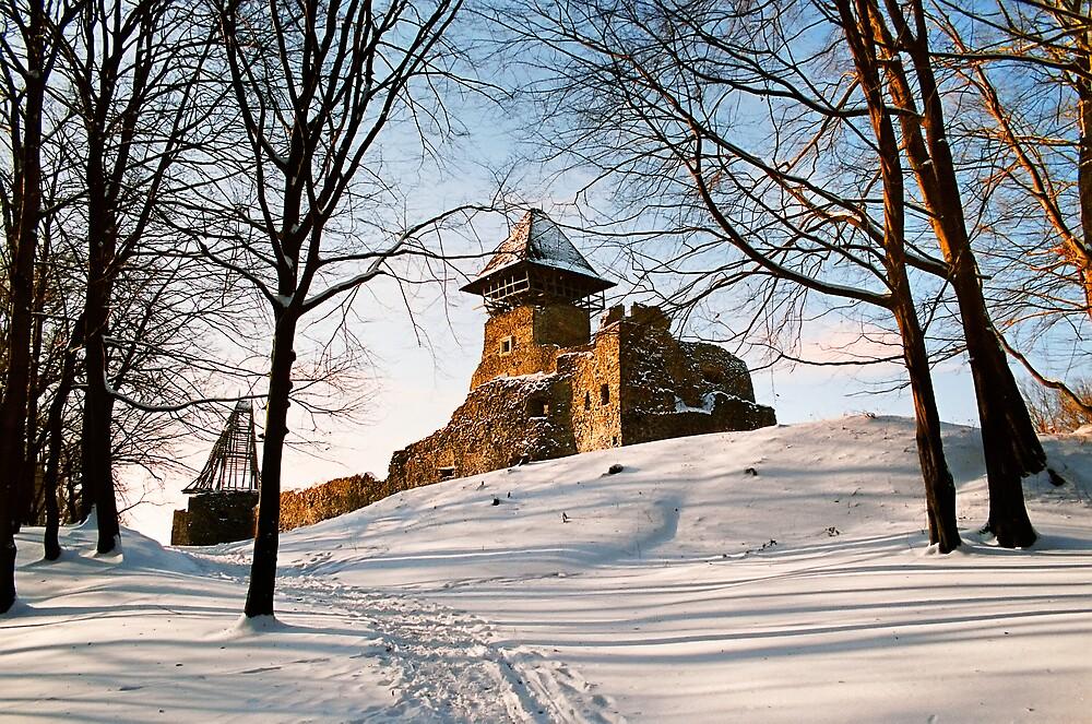 Old Castle by Mikhail Palinchak
