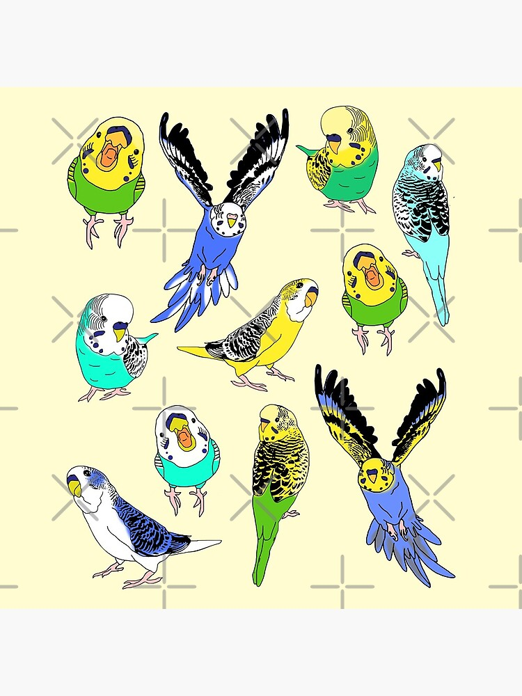 budgie doodle pattern by FandomizedRose