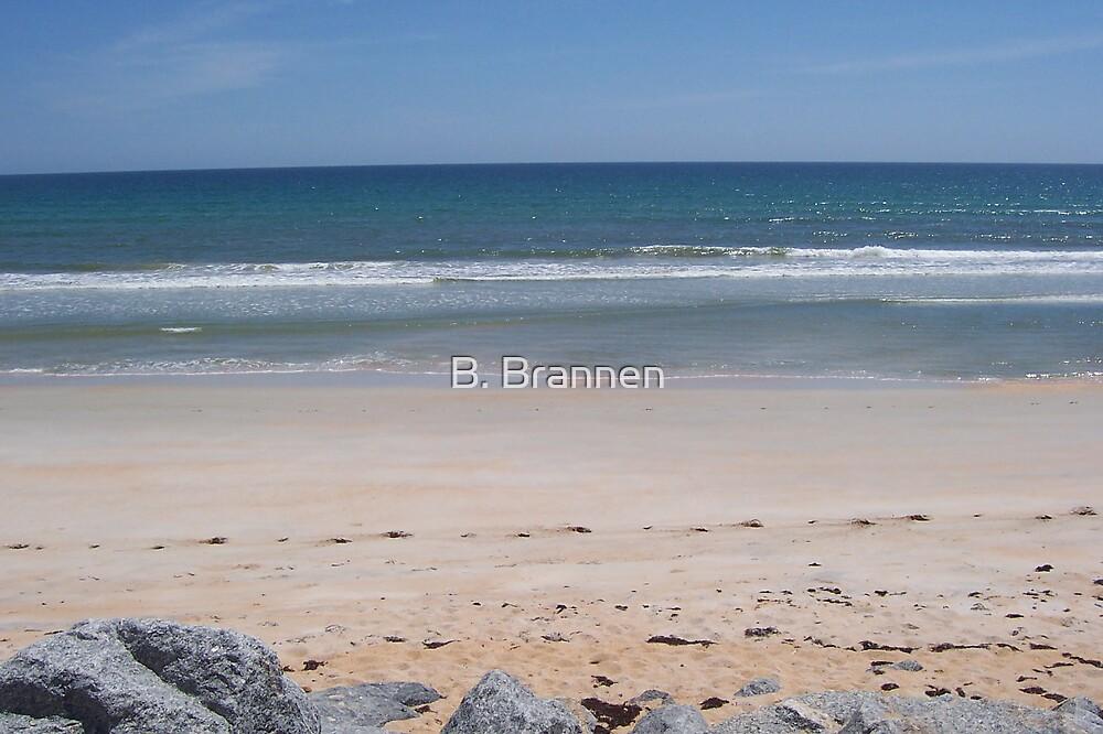Ocean, beach and rocks by B. Brannen