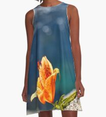 Beauty by the Waters A-Line Dress