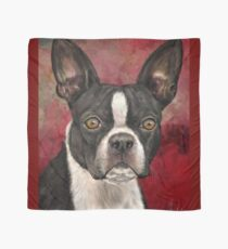 Painting of Black and White Boston Terrier on Burgundy Background Scarf