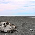 Black Sand Color Sky by JulieMaxwell