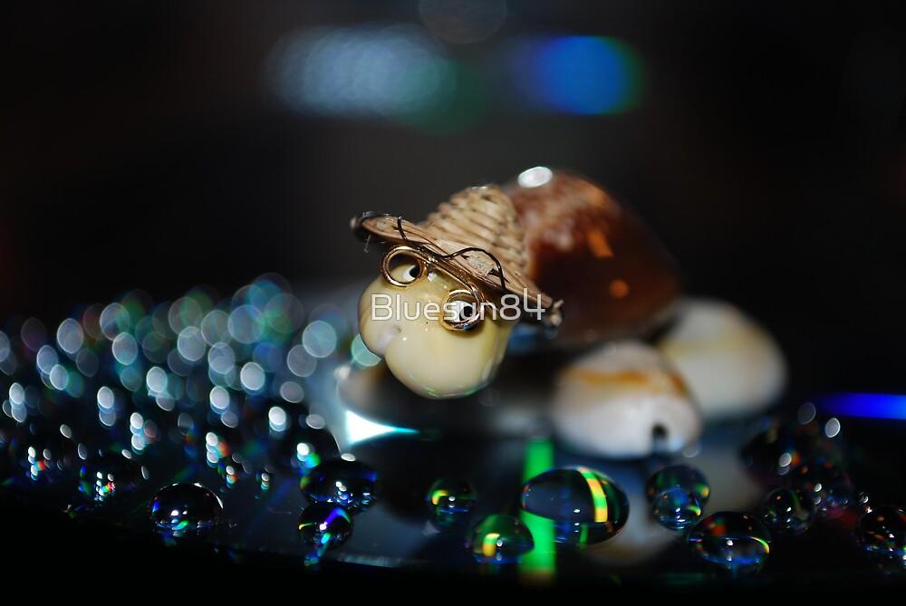 Disco Turtle by Bluesun84