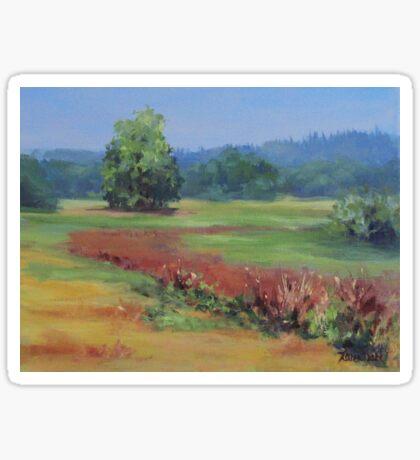 Summer Refuge Original Plein Air Painting Sticker