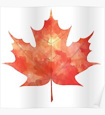 Watercolor Maple Leaf Poster
