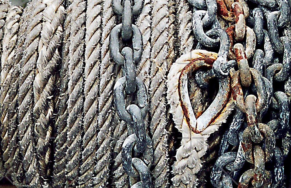 ropes and chains by monica palermo