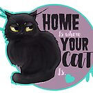 Home is where your cat is by Aracnephobia