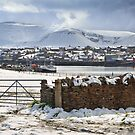 Island of Hoy from Stromness. Orkney Mainland. Northern Isles. Scotland. by PhotosEcosse